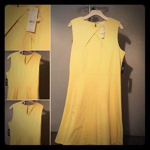 NWT Yellow Flare Dress